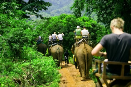 Elephant Trekking in Koh Chang