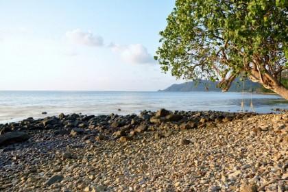Pearl Beach Saffron By The Sea