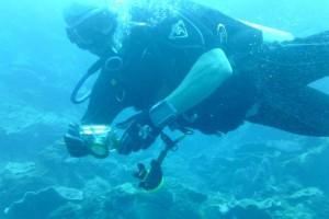 whitesandsdivecentre-diver